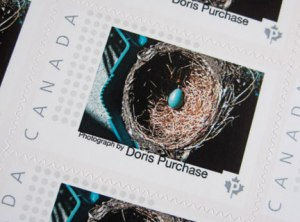 doris-purchase-stamp